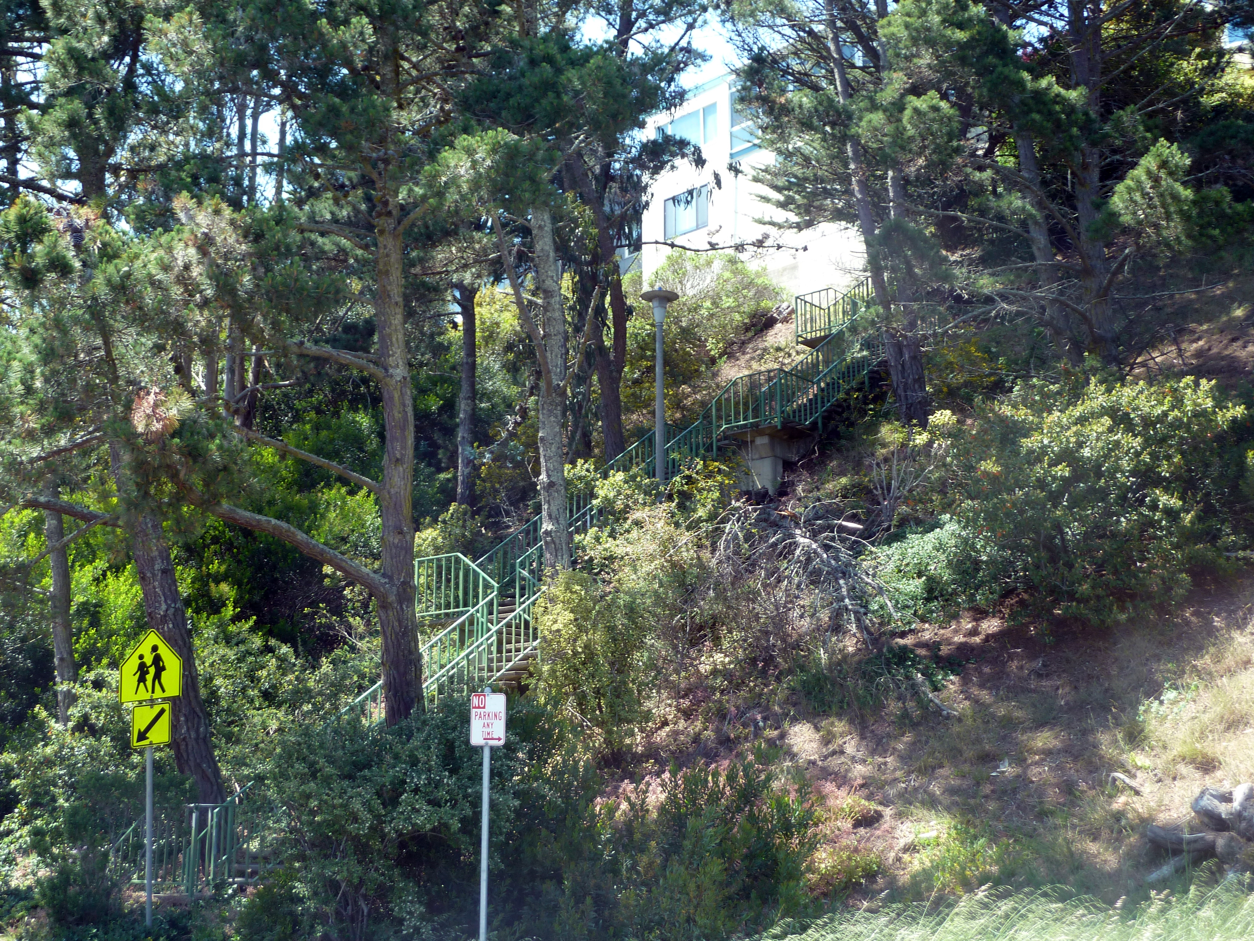San Francisco's ambitious pedestrians will find that most of the city's hilly, terraced neighborhood streets are linked by public stairwells, often tucked inconspicuously between and behind houses, or under thick tree cover- like this one in the Forest Knolls District.  (photo by D. Speredelozzi)