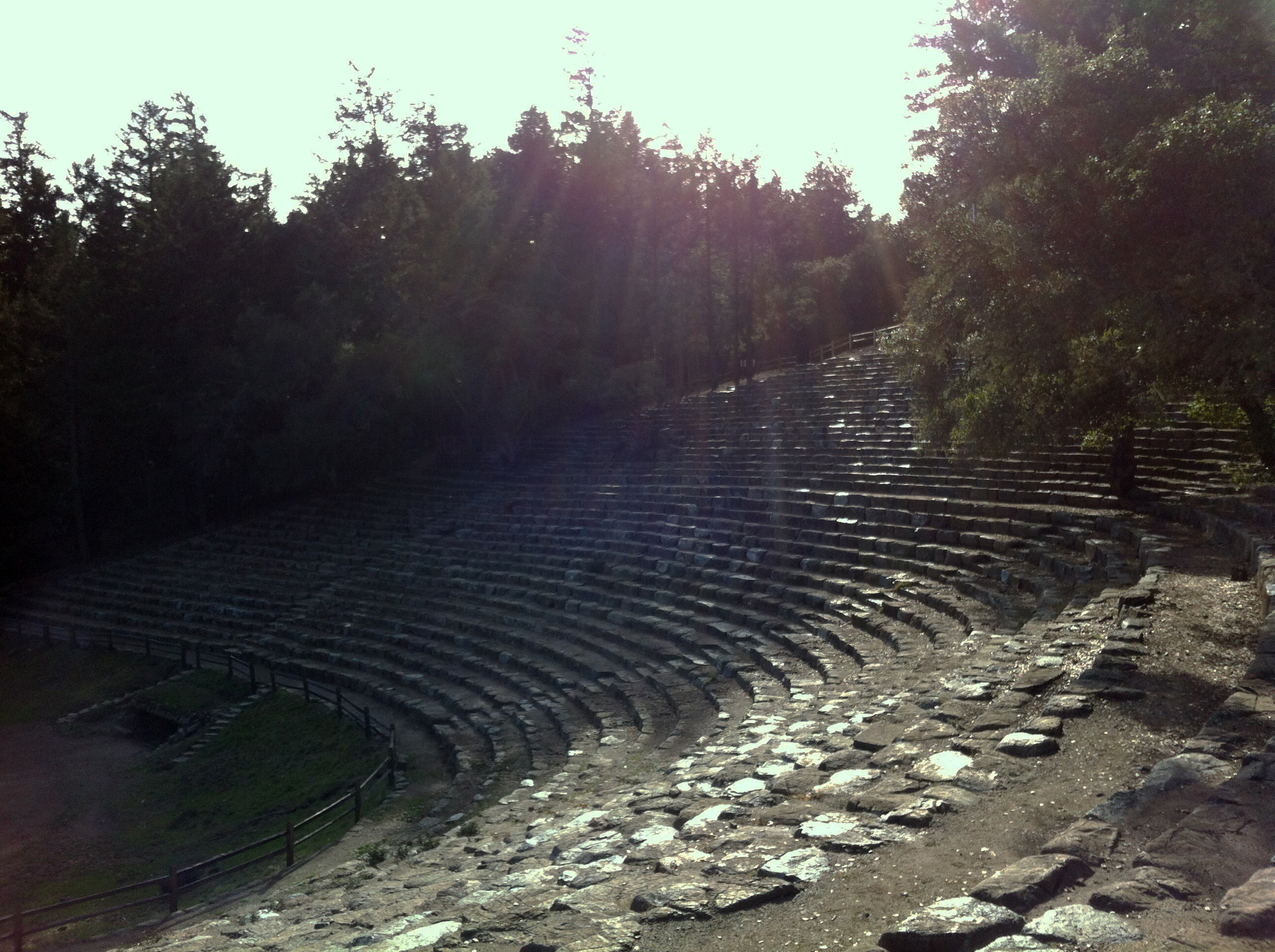 The Mountain Ampitheater at Mount Tamalpais, site of renowned annual live performances of Shakespeare and other works.  (photo by D. Speredelozzi)