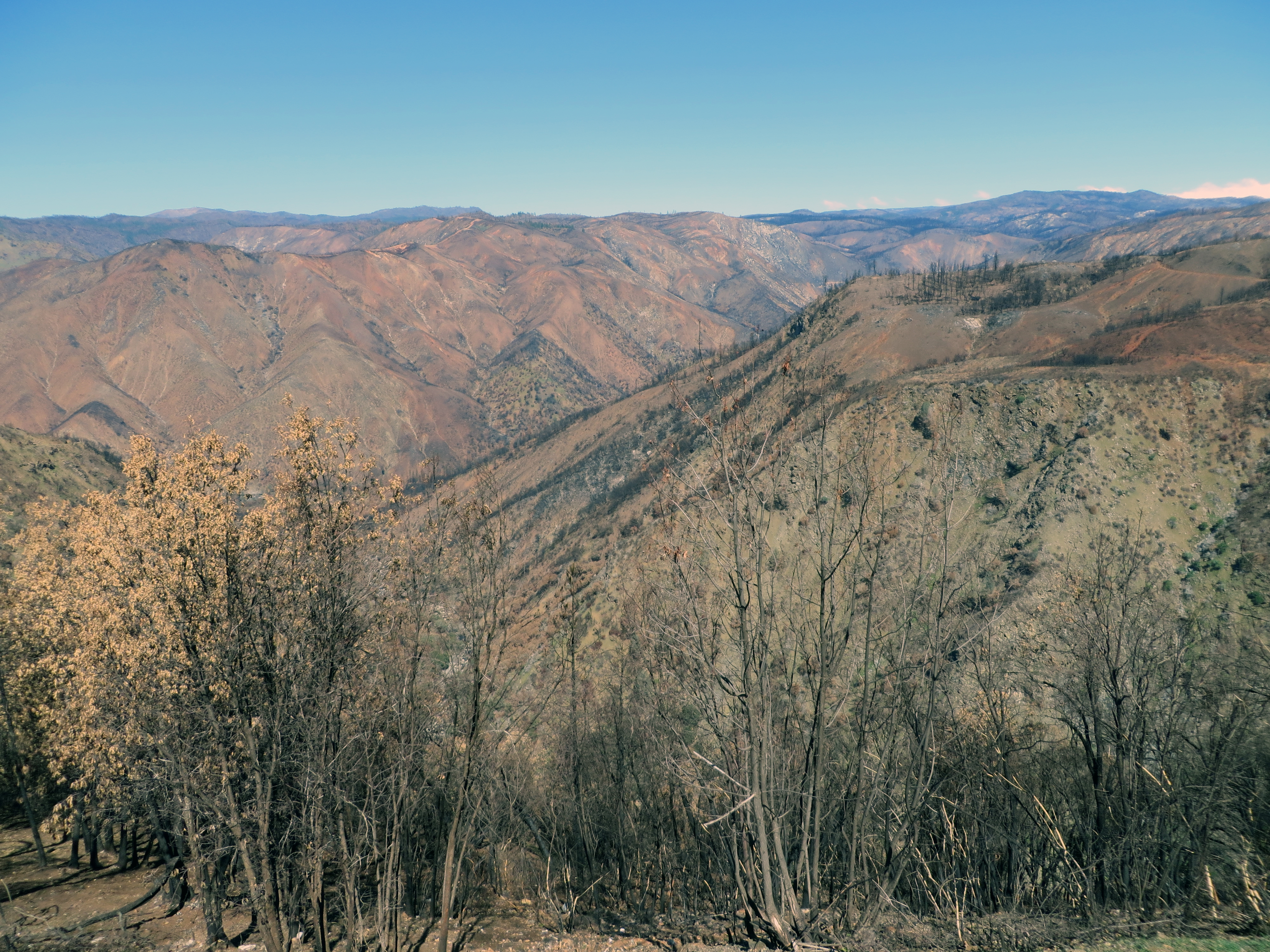Far below the Rim of the World vista point, the canyon of the South Fork of the Tuolumne River winds its way northwestward, joining its parent, the Tuolumne River proper, in the left middleground of the image.  (photo by D. Speredelozzi)