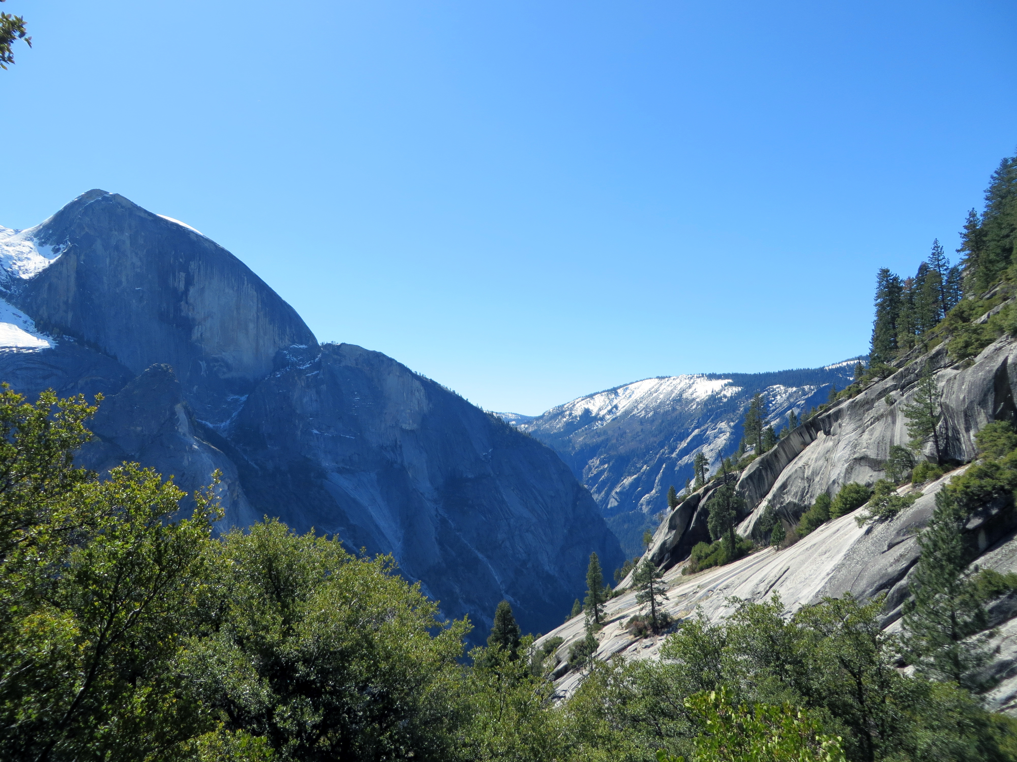 The sheer northern face of Half Dome looms menacingly over Lower Tenaya Canyon, as seen from near the top of the Snow Creek switchbacks.  (photo by D. Speredelozzi)
