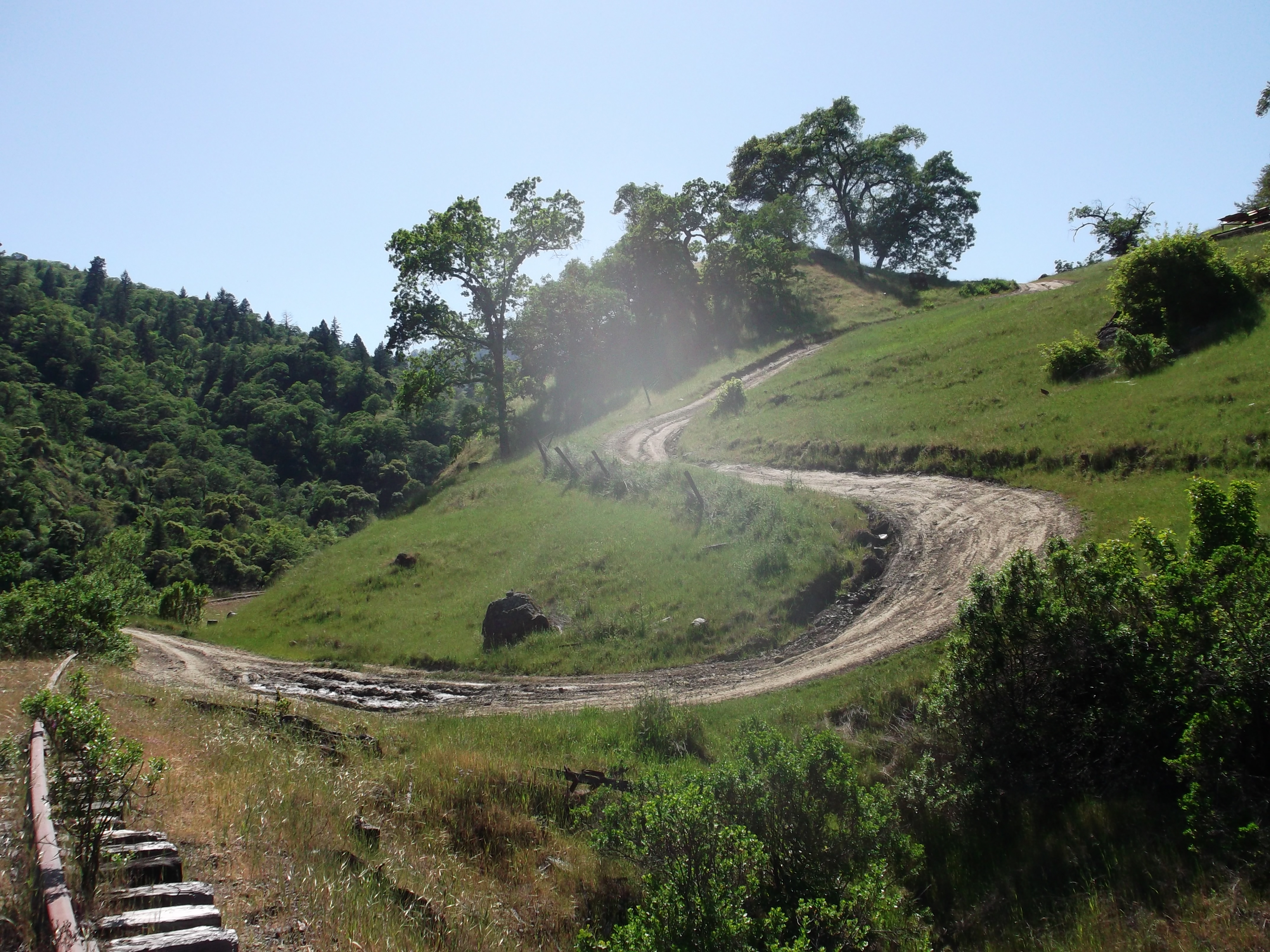 Private ranch road, Mendocino County. (photo by D. Sperededelozzi)