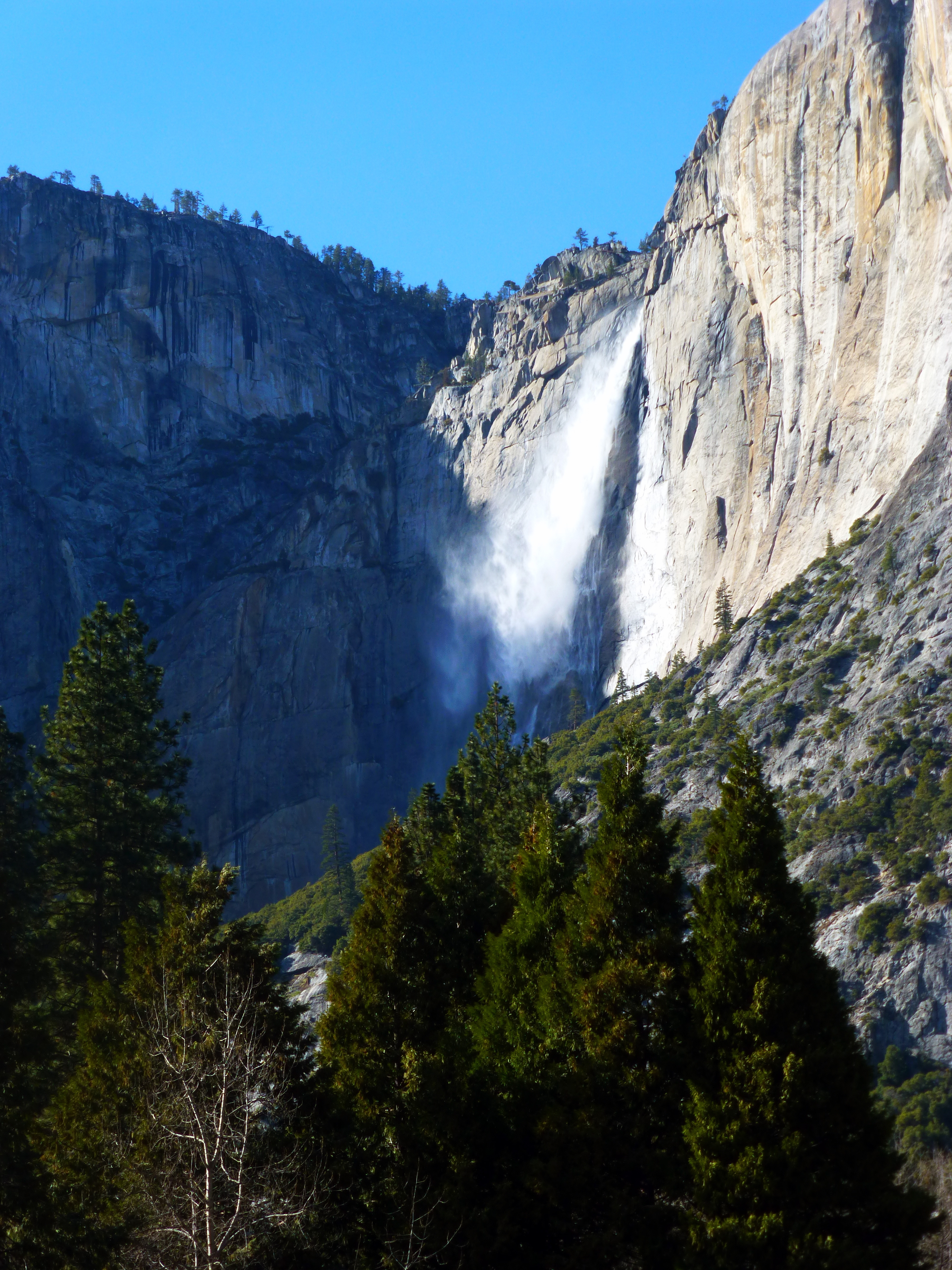 When the hell are they gonna finally just get on with it and install that heli-pad at the foot of Upper Yosemite Falls, just above the lip of Lower Yosemite Falls? I mean... how many Darwinian deaths will it take? Sweet Jesus, I beg of you... HOW MANY?!?!? (photo by D. Speredelozzi)