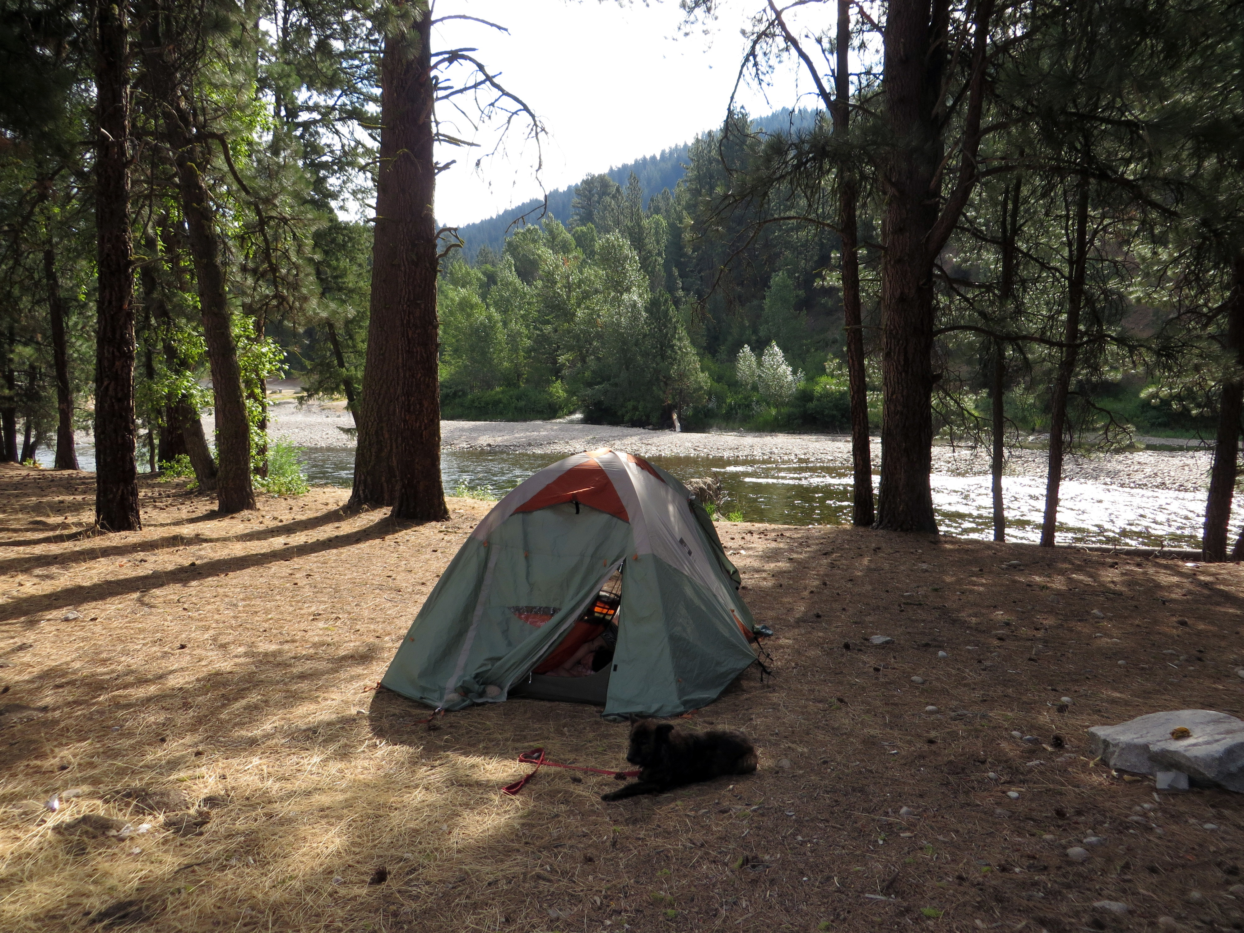 Sadie's Stupid Hot Springs Camp, Boise National Forest, ID July 29 (photo by D. Speredelozzi)