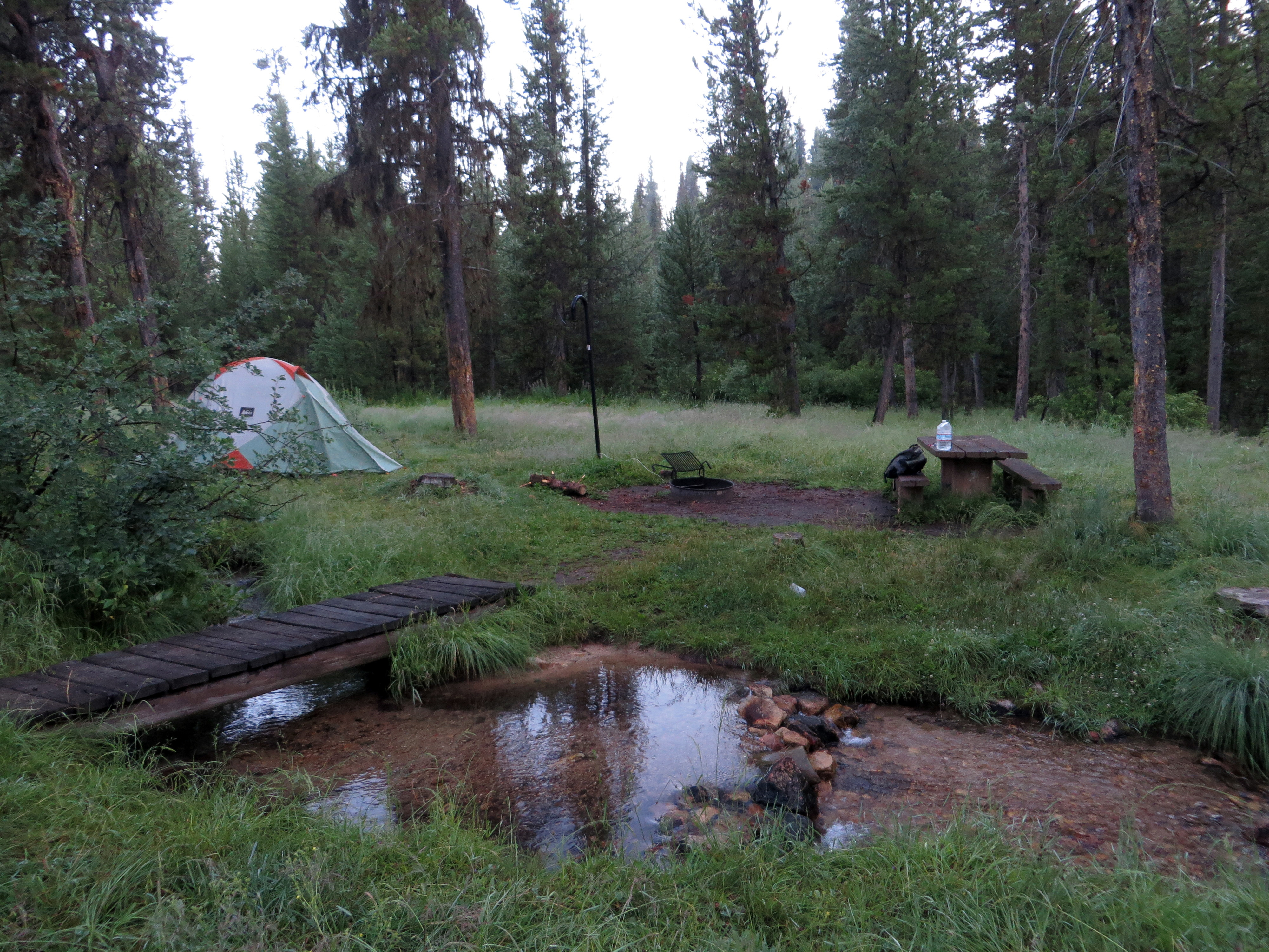 Morning Theft Creek Camp, Boise National Forest, ID July 31 (photo by D. Speredelozzi)